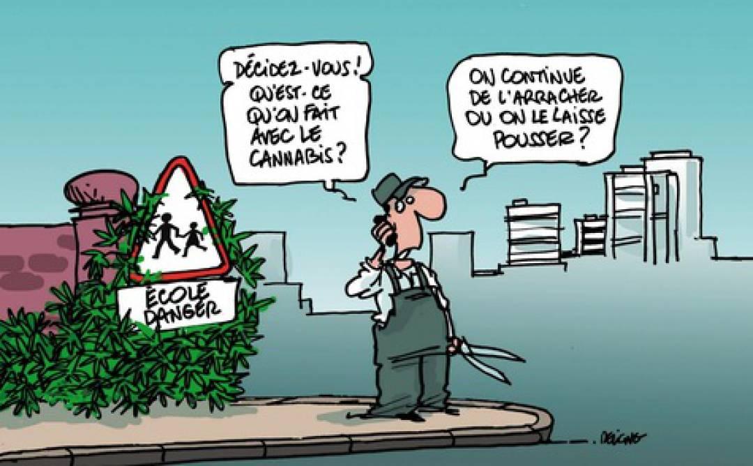La-depenalisation-du-cannabis-continue-de-faire-debat_article_main