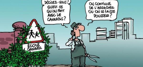 Le débat du cannabis en France