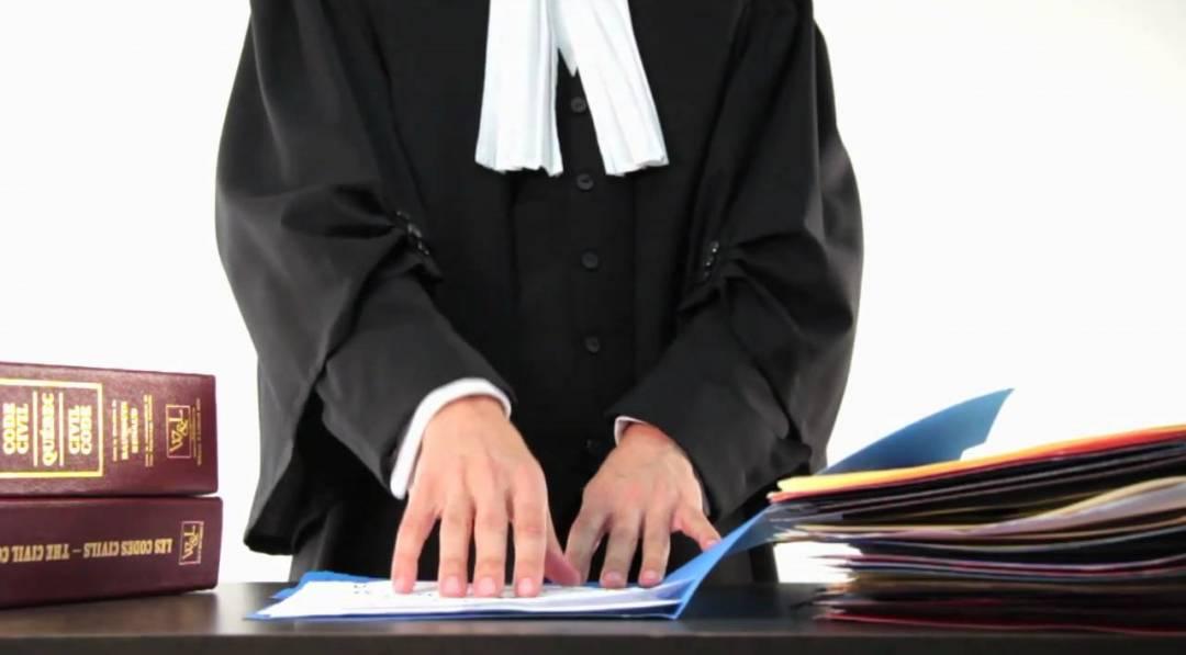 avocat statistique 2019 - grands avocats 2